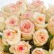 Купить в Харькове Роза Muscat