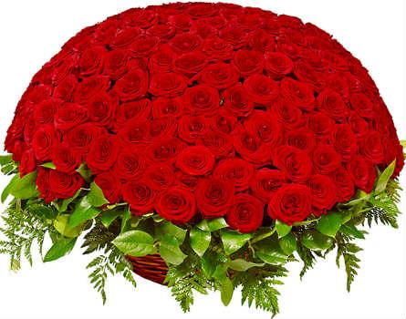 Купить в Харькове Корзина 201 роза №29