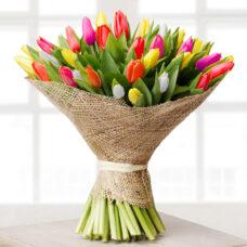 Тюльпаны МИКС3