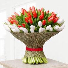 Букет-микс 101 тюльпан