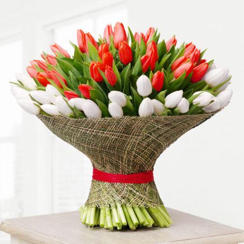 101 тюльпан