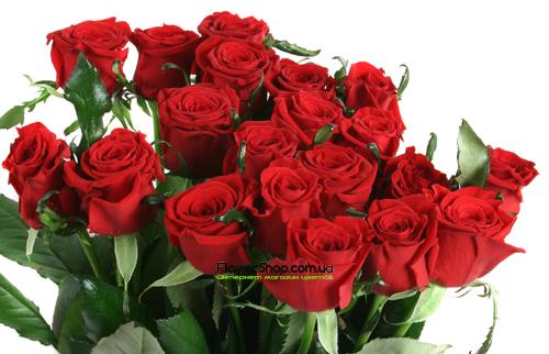 Купить в Харькове Роза Престиж