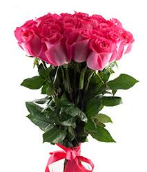 Купить в Харькове Роза Топаз (Topaz)